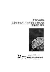 H30-houkoku-kessanのサムネイル
